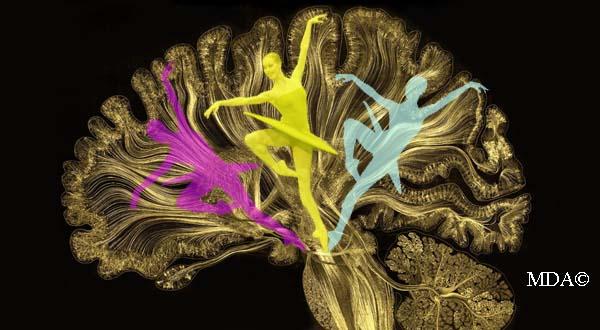 Danse et flexibilité psychologique - médecine des arts©