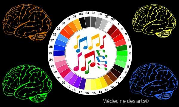 Synesthésie cerveau