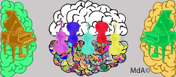 musique et connecitivité cérébrale