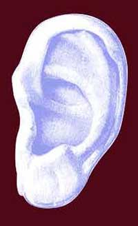 oreille absolue revue