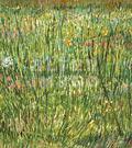 Van Gogh, un coin d'herbe