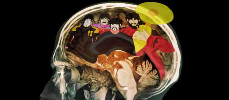 Beatles et cerveau