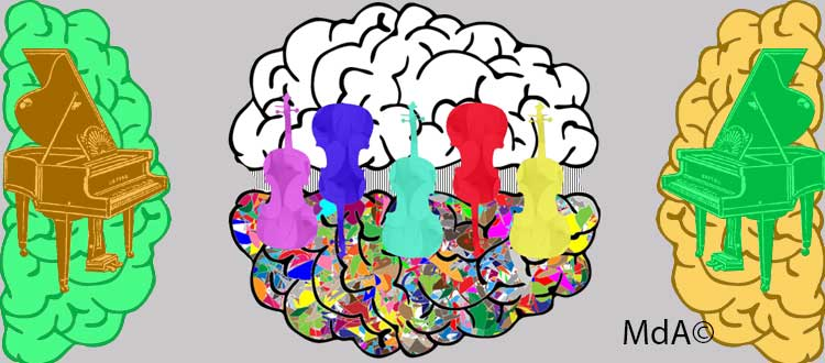 Jouer d'un instrument de musique améliore la connectivité audio-motrice dans le cerveau